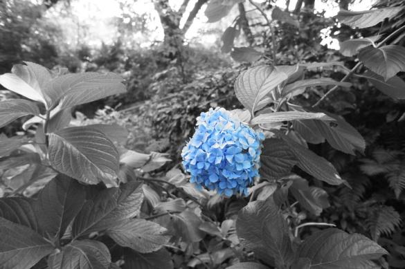 パートカラー:青