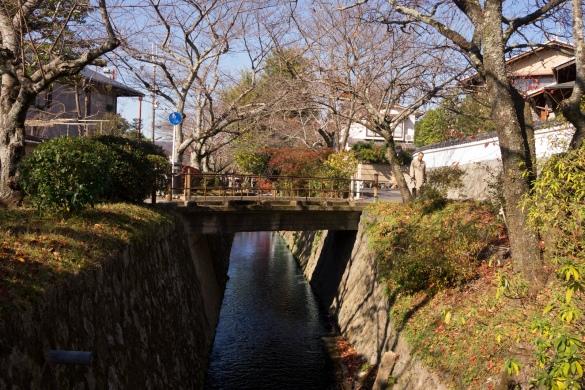 哲学の道 道沿いの小川