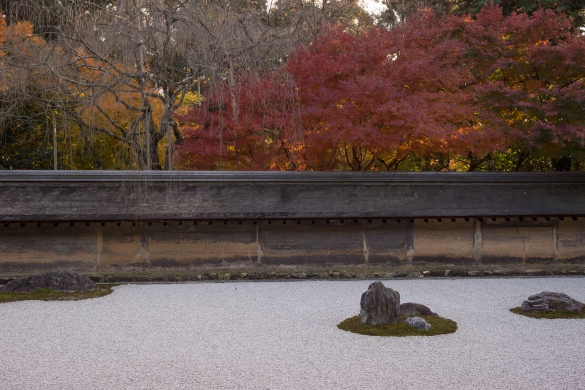 龍安寺にて③ 石庭と紅葉